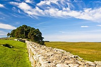Hadrian's Wall at Houstead's Fort