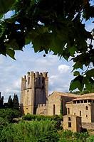 Sainte-Marie de Lagrasse abbey, Lagrasse. Aude, Languedoc-Roussillon, France