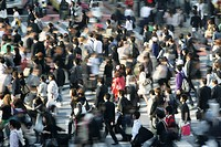Shibuya pedestrian crossing, the world's busiest pedestrian crosswalk, Shibuya district, Tokyo, Japan, Asia