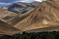 China, Tibet, Gyantse