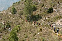 Hiking group, Sierra de Aitana, Costa Blanca, Spain, Europe