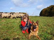 domestic sheep Ovis ammon f. aries, shepherd daughter with sheepdog in front of herd of sheep, Germany, North Rhine_Westphalia, Sauerland