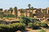 Maroc, palmiers du Ksar El Khorbat dans la région de Tinejdad