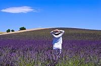 A woman standing in lavender field, Provence_Alpes_Cote d´Azur, Plateau De Valensole, France