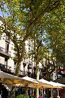 Spain, Catalonia, Barcelona, The Ramblas