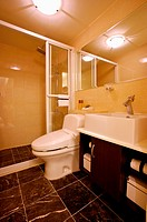 Modern Interior Design _ Bathroom