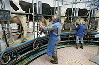 Milking installation, Baden-Wuerttemberg, Germany