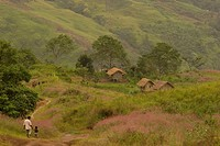People on a track to the village, Highlands, Papua New Guinea, Oceania