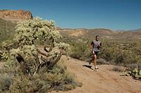 Man jogging, running, in Joshua Tree National Park, California, USA