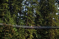 Lynn Canyon, Capilano Suspension Bridge, Vancouver, Canada, North America