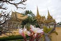 Blossoms and plants in front of The Royal Palace, Phnom Penh, Cambodia, Asia