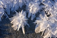 Macro view of ice crystals hoar frost on the frozen surface of a small pond following an extended period of sub zero winter weather in Alaska´s Tongas...