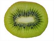 kiwi fruit, Chinese gooseberry Actinidia deliciosa, Half kiwi fruit