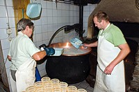 traditional cheese production: filling of shapes with a special cheese made of whey, called Ziegerkaese or Ricotta, Switzerland, Valais, Taeschalp, Ze...