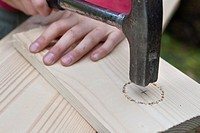 building a nest box. Girl using a hammer to make the entrance hole in a plank