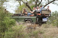 tourist in a car watching leopard