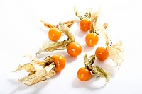 Physalis, Cape Gooseberries