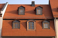 Roofs Geithain Saxonia Germany