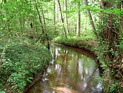 Landscape to eitzener brook in bienenbuettel germany