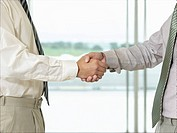 Businessmen Shaking Hands in front of window side view close_up