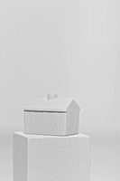 mini house on the box