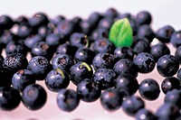 Close_up of fresh blueberries