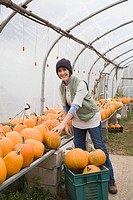 Farmer in greenhouse with pumpkins (thumbnail)