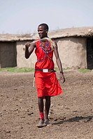 Maasai man walking, Kenya, Africa
