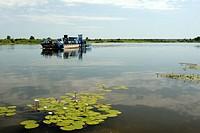 Ferry crossing Okavango River, Shakawa, Botswana, Africa