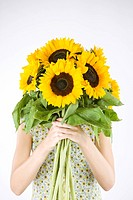 A Young Woman Behind A Bunch Of Sunflowers (thumbnail)