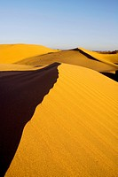 Spain _ Canary Islands _ Gran Canaria _ South Coast _ Dunes of Maspalomas