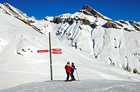 Two sikiers standing at a directional sign in front of an impressive mountain range of the skiing area Ovronnaz, Ovronnaz, Valais, Switzerland