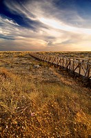 Gateways to the beach. Odiel Marshes Natural Park. Biosphere Reserve. Huelva. Spain