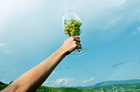 Hand of young woman holding a wineglass of white grapes in the air (thumbnail)