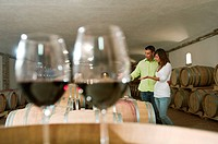 Couple in a wine cellar with glasses of red wine (thumbnail)