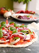 Italian style vegetarian pizza on the counter waiting to be baked (thumbnail)