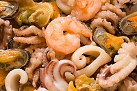 Shrimps, mussels, octopuses and other seafood prepared for the use by close upShrimps, mussels, octopuses and other seafood prepared for the use by cl...