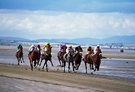 Horse Racing, Beach racing at Laytown, Co Meath