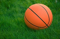 Basketball Sitting In Green Grass
