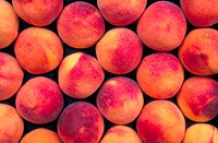 Close_up of a pile of fresh peaches
