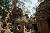 Temple district Ta Prohm in Angkor Wat, Cambodia, Asia