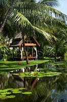 Anantara Hotel, Mae Nam Beach, Ko Samui, Thailand