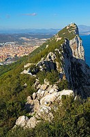 Top Of The Rock. Across Gibraltar To Spain. Gibraltar. UK.