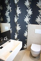 Architecture, single_family dwelling, live, real estates, residential property, WC, toilet, wash basin, wallpaper, interior,