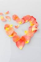 Broken heart with rose petals, Symbol for Lovesickness