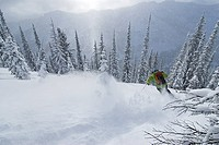 A female skier descends a slope in the Selkirk Mountains, Valhalla Powdercats, British Columbia