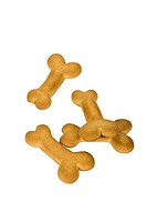 Close_up of dog biscuits