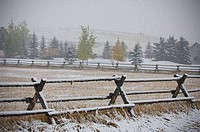 Snow covered Jack fence in a field, Bozeman, Gallatin County, Montana, USA
