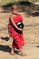 Myanmar, Burma, Bagan, young buddhist monk gathering alms,