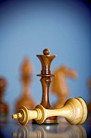 chess game - black king standing over white king - checkmate
